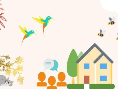 蜂が巣を作る家、鳥が来る家。風水が良いと起きる5つの現象